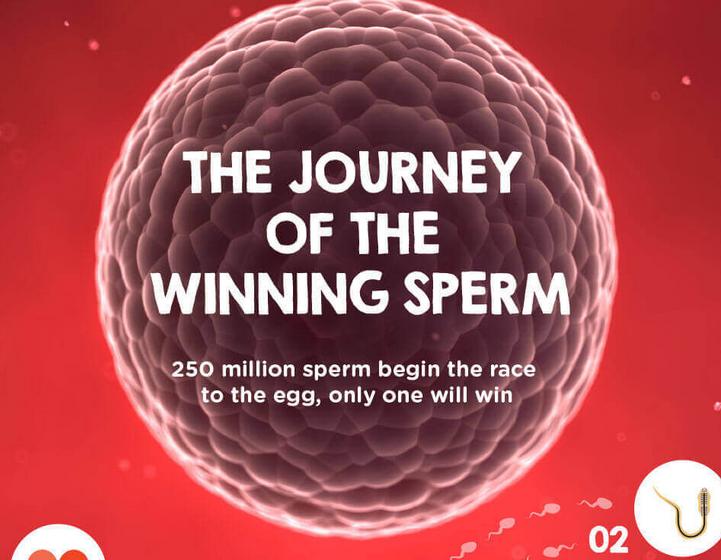 Journey Winning Sperm